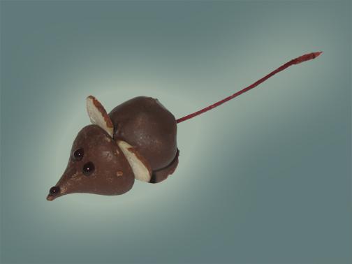 chocolate_mouse.jpg