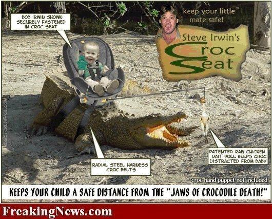 CrocSeat.jpg