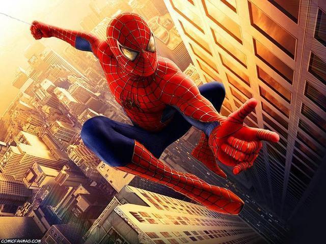spiderman_the_movie__Large_.jpg